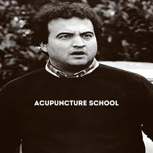 acupuncture-school-is-fun