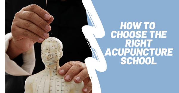 choosing-acupuncture-school-florida