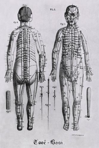 acupuncture-school-merdian-diagram