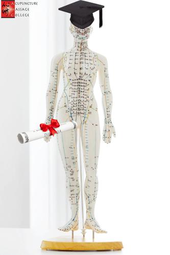 acupuncture-graduation-rate
