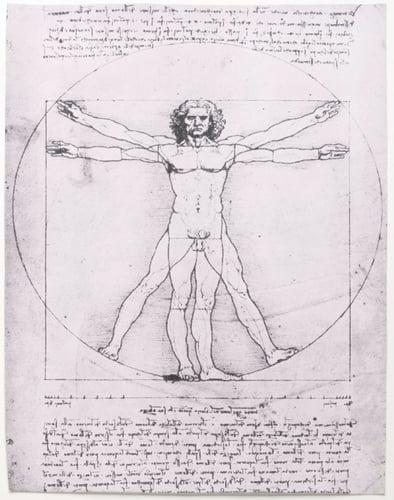 Vitruvian-Man-Leonardo-da-Vinci-Gallerie