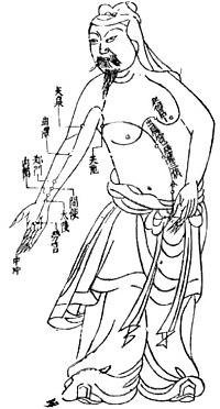 Acupuncture model from the Ming dynasty.jpg