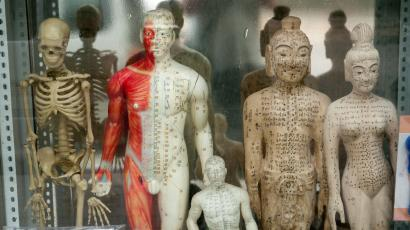 acupuncture-chinese-model