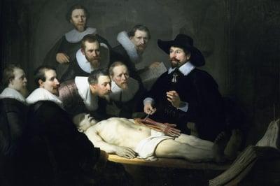 anatomy-physiology-class