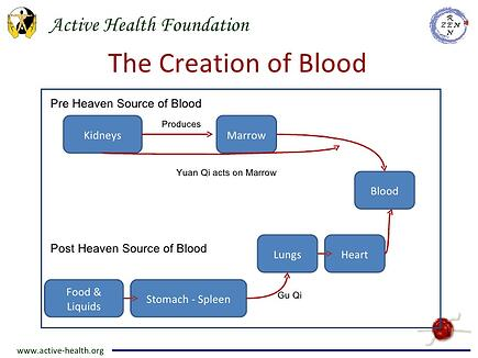 The creation of blood according to TCM
