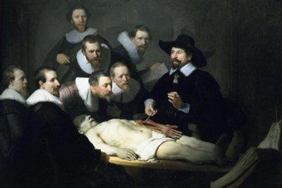 clases-anatomia-masaje-miami