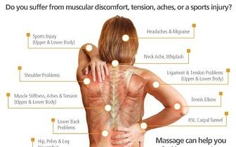 Massage Therapy Anatomy