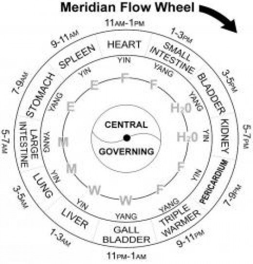 Meridian Flow Time Wheel-Acupuncture Program-Miami, FL