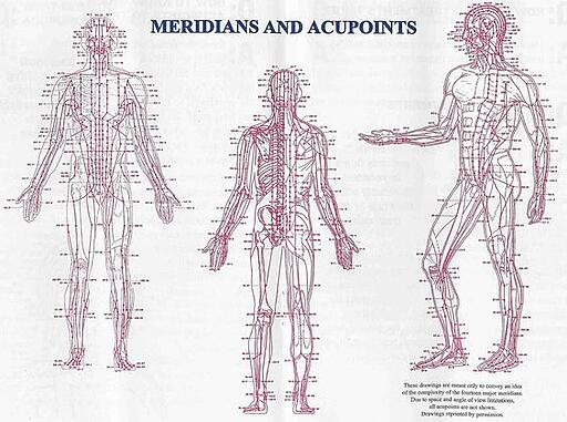 Meridian Point Chart-Acupuncture School-Miami, FL