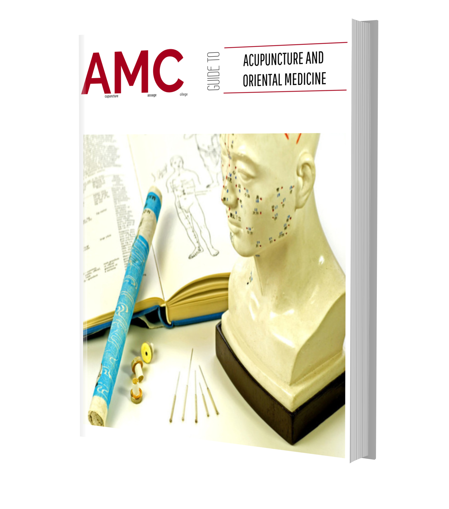 acupuncture-career-guide-florida