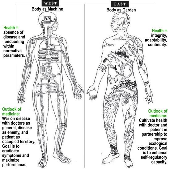 Western vs Eastern Medicine