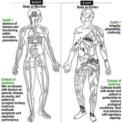 What is Shiatsu? A Comprehensive Intro to Shiatsu Massage