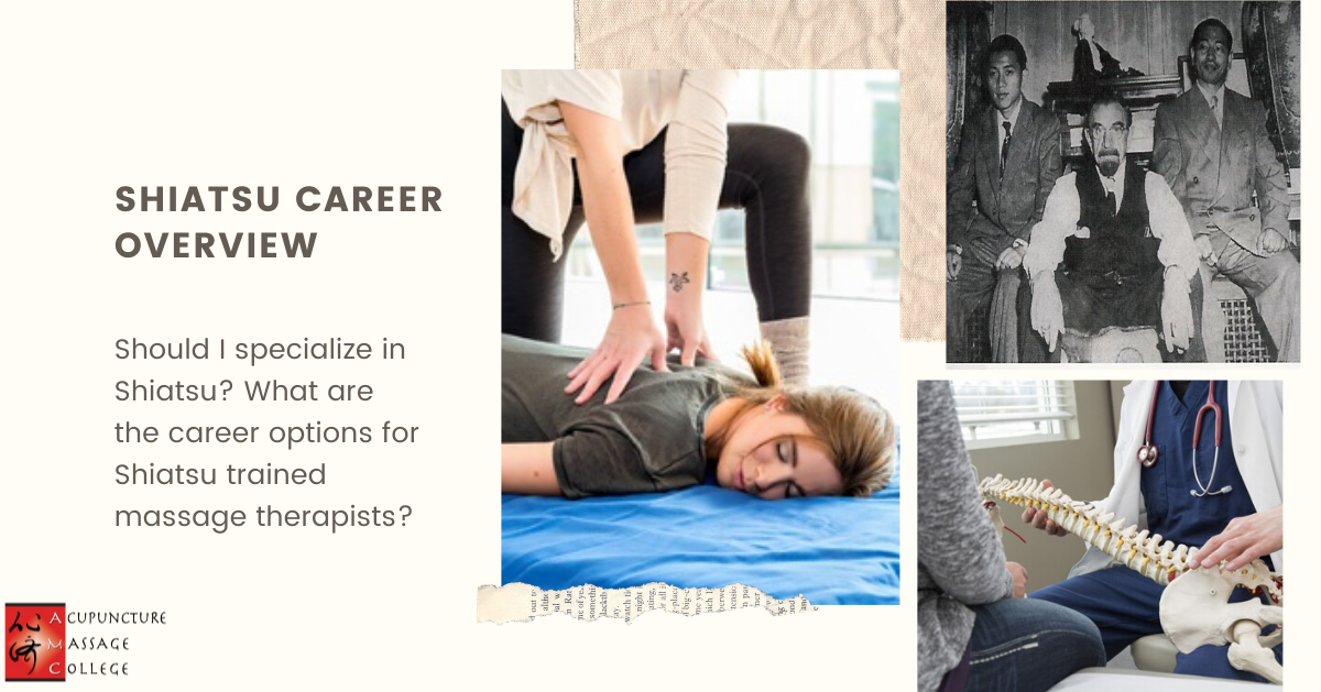 Shiatsu-Career-Overview