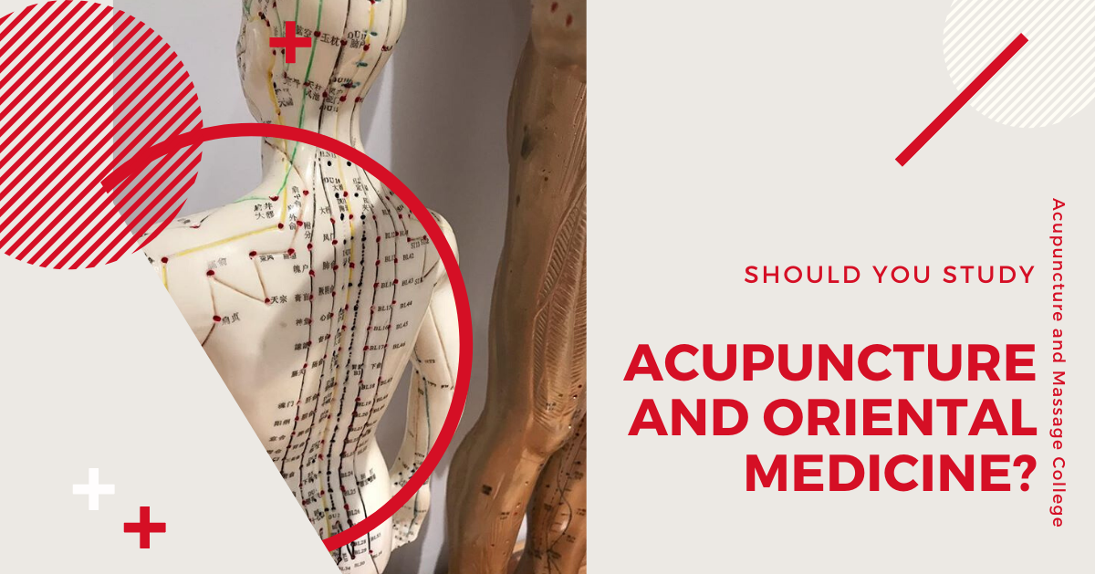 study-acupuncture-school-florida