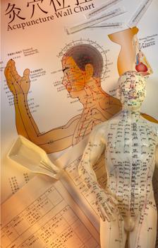 learn-acupuncture-miami